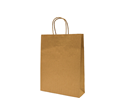 Picture of Carry Bag Brown Paper Twist Handle 340 x 260 + 80 Small -CARB063530- (SLV-25)